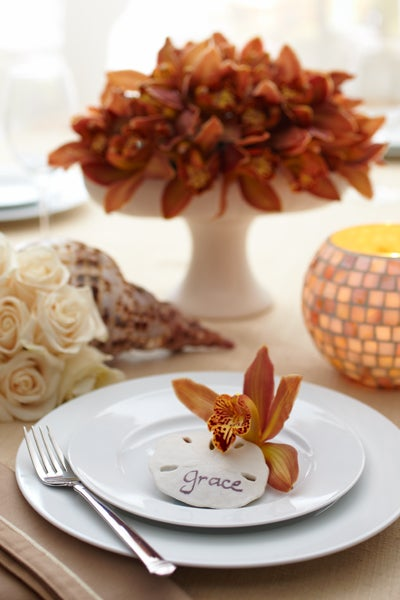 Orchid Sand dollar Place Setting