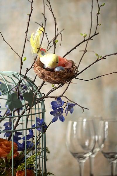 Bird in Nest On Cage