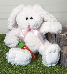 Cuddly Bunny Plush with Candy Filled Carrot