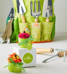 Garden Tool Tote & Flower Boxes