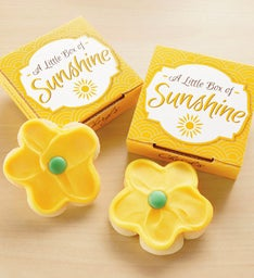 Create Your Own Little Box of Sunshine Cookie Card