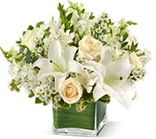 Sympathy Flower Arrangements