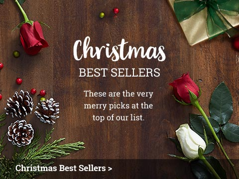 Christmas Best Sellers
