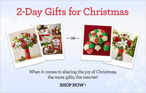 Multi-Day Gifts for Christmas