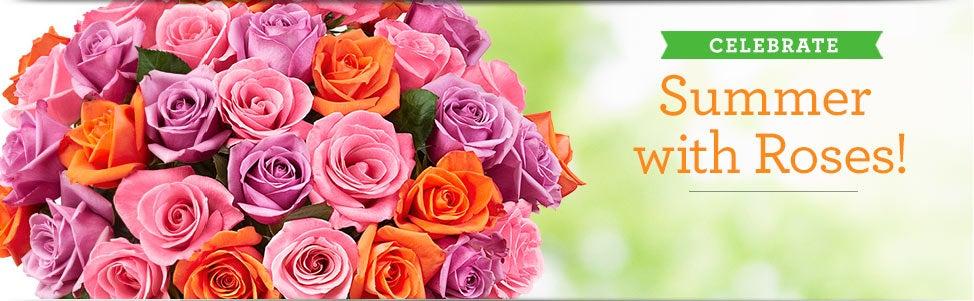 Shop Summer Roses