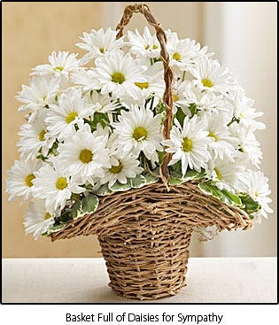 Basket Full of Daises for Sympathy