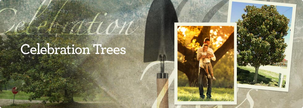 Celebration Trees