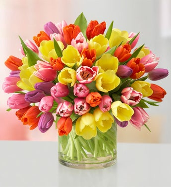 Assorted Tulips 60 Stems
