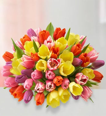 Assorted Tulips: 60 Stems Bouquet Only