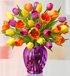 Assorted Tulips, 30 Stems