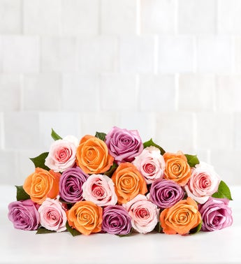 Sorbet Roses 18 Stems Bouquet Only