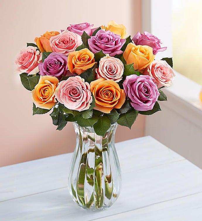 Sorbet Roses, Buy 12, Get 6 Free + Free Vase