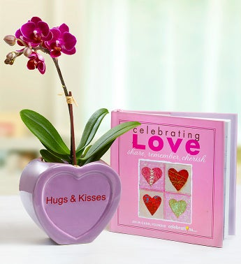 Conversation Heart Mini Orchid