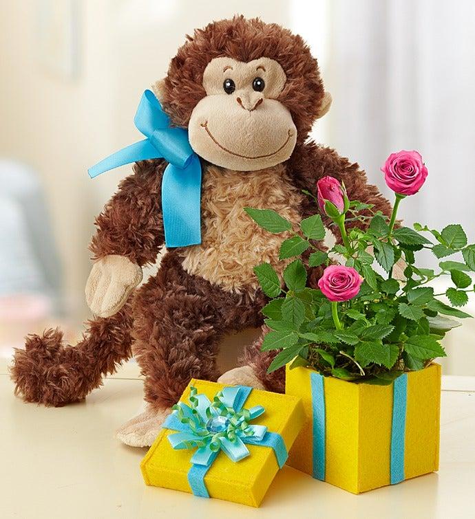 Birthday Surprise with Monkey