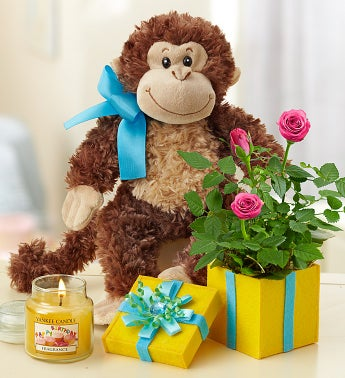 Birthday Surprise with Monkey and Yankee Candle