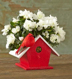 Christmas Birdhouse of Blooms®