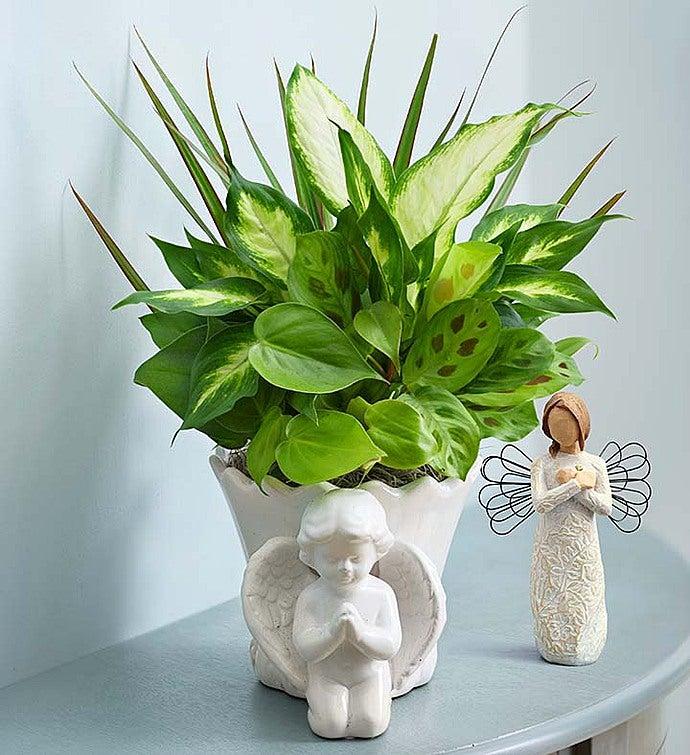 Praying Angel Dish Garden + Rememberance Angel