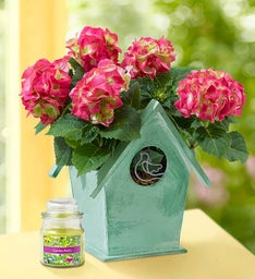 Bird House of Blooms® + Free Candle