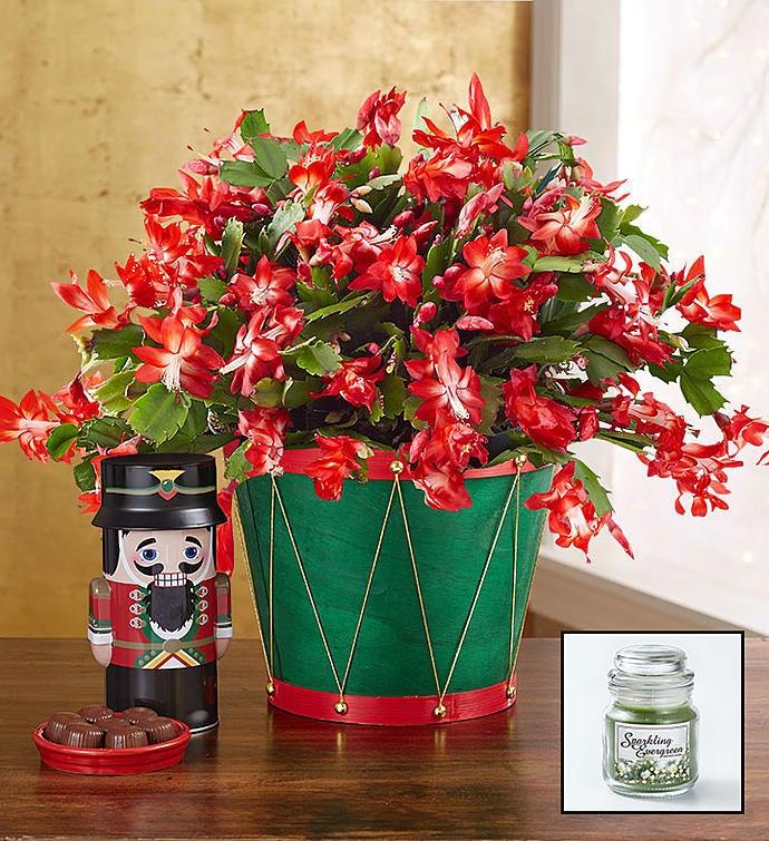Unique Christmas Gift Baskets