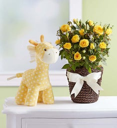 GUND® Baby Lolly Giraffe Rose Plant