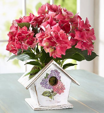 August - Bird House of Blooms®
