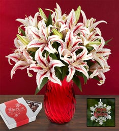 Candy Cane Lilies