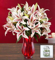 Candy Cane Lilies + Free Candle