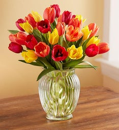 Assorted Fall Tulips + Free Vase