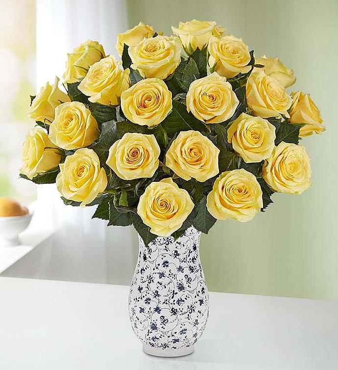 Yellow Roses  Stems