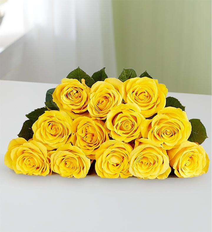 April's Roses
