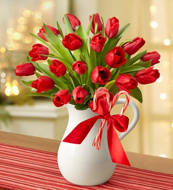 Peppermint Pitcher of Tulips™