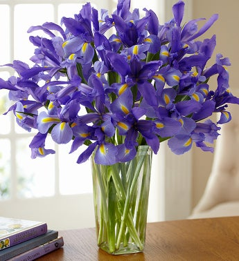 Spring Country Iris Bouquet + Free Vase