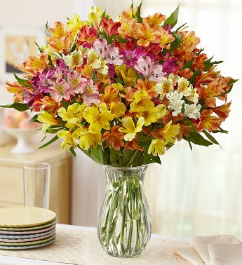 Assorted Peruvian Lilies: 100 Blooms + Free Vase