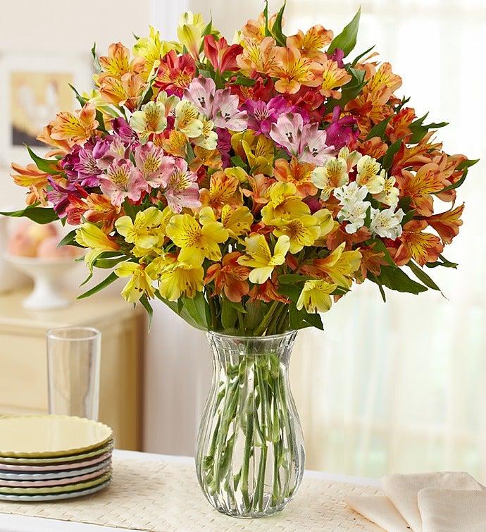 Assorted Peruvian Lilies, 100.