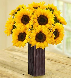 Sunflower Bouquet, 10-20 Stems