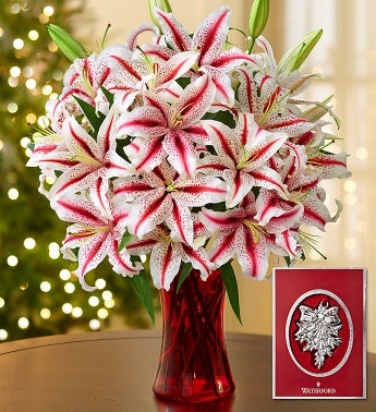 Candy Cane Lilies with Waterford® Ornament