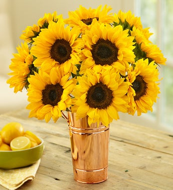 10 Sunflowers + Free Vase & Cookies
