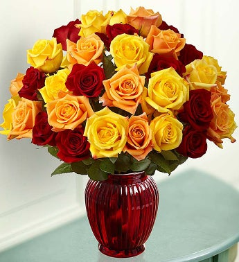 Autumn Roses, 36 for $36