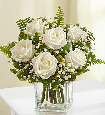 Love's Embrace™ Roses - White