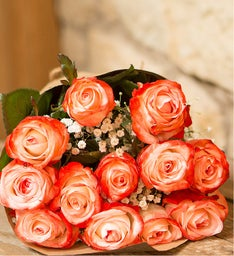Coral Roses, 12 Stems