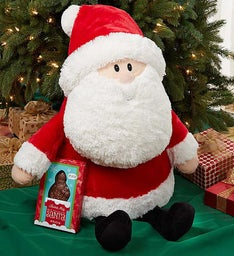 Gund® Jolly Santa with Fannie May Chocolate
