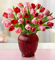 Sweetest Love Tulips