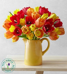 Autumn Tulips in Pitcher by Real Simple®