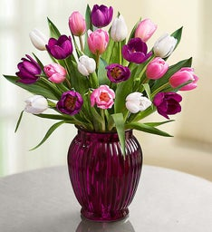 Pink, White & Purple Tulips