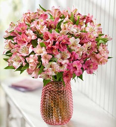 Perfectly Pink Peruvian Lilies, 50-100 Blooms