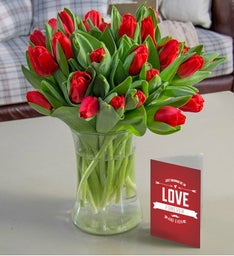 20 Valentine's Day Tulips