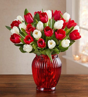 Holiday Tulips 15 Stems for $2...