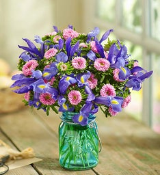 Fresh Cuts™ Pink  Aster & Blue Iris, 20-40 Stems