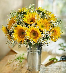 Fresh Cuts™ Sunflowers & Matricaria, 15-30 Stems