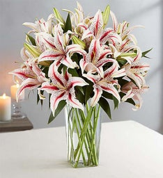 Winter Lilies for Sympathy